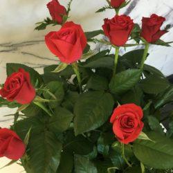 Emeralds Roses