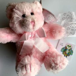 Pink Bears available at Stems